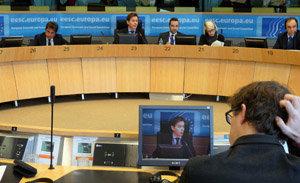 Un momento de la intervención de Jesús Gamallo en la comisión CIVEX.